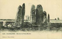 Menhirs du Vieux Moulin |