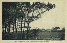 La Bernerie-en-Retz   Riviere-bureau, phototypie