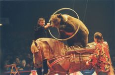 Cirque PHENIX   Kervinio Yvon