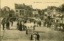 Le Marché aux Chevaux | Nouvelles Galeries
