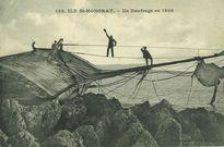 Ile Saint Honorat - Un naufrage en 1908 |