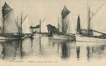 Bateaux thoniers au Port |