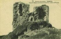 Environs de Lanvollon - Ruines du Château de Coëtmen (Grande Tour ronde du XIIe siècle) |