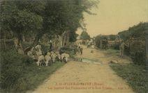 Les Sources des Fontenottes et le Bois Frileux |
