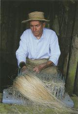 Démêlage des fibres de sisal. | Kervinio Yvon