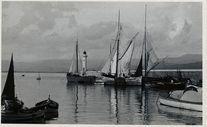 Vue générale du port |