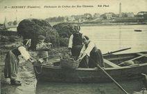 Pêcheuses de crabes des Iles Glémans |