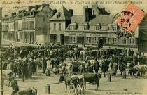 F. CHAILLOU 9, Place du Marché aux chevaux Amiens |