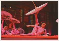 29e Festival du cirque de demain- 2008 | Kervinio Yvon