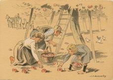 La récolte des pommes | Bonnefoy J.H.