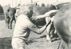 Comice agricole cantonal (1981) | Kervinio Yvon