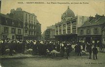 La Place Duguesclin, un jour de Foire |