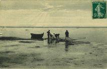 La pêche à la senne |
