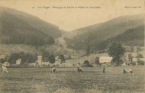 Pâturages du Rudlin et Vallée du Louchbach |