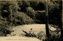 Etang de Bourg-Blanc |