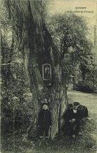 Gros chêne de Tronjoly |