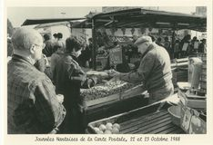 Nantes | Kervinio Yvon