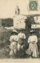 Femmes faisant la Cueillette des Fleurs |