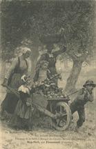 La Récolte des Pommes | Deyrolle Théophile