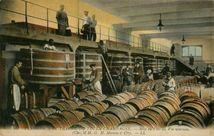 Mise en Fûts du Vin nouveau |