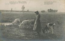 Le troupeau de chèvres   Thomas A.