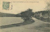 FORET DE PAIMPONT |