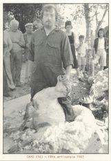 Fête artisanale 1983 | Kervinio Yvon