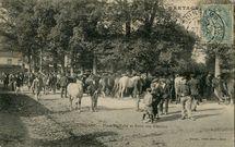 Place du Vally et Foire aux Chevaux | Mancel