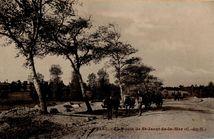 La Route de St-Jacut-de-la-Mer (C.-du-N.) |