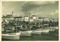 Port de La Turballe | Cholet Jacques