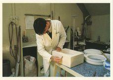 Fabrication du modèle en plâtre M. Olivier ARNAUD | Kervinio Yvon