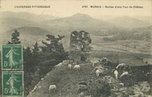 Ruines d'une Tour du Château  