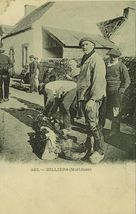 BILLIERS (Morbihan) |