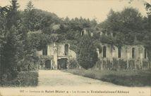 Les Ruines de Troisfontaines-l'Abbaye |