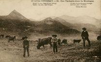 Une Vacherie dans la Montagne | Marcenac E.