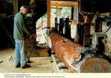 Roland Le Roux débite un tronc de sapin sur son banc de scie | Quinquis J.