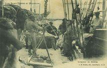 Iles Saint-Pierre-et-Miquelon - Livraison de morues  