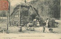 Une Hutte de Bûcherons dans la Forêt de Saint-Fargeau | Machavoine