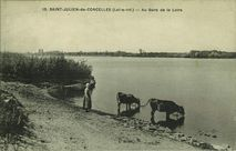 Au Bord de la Loire |