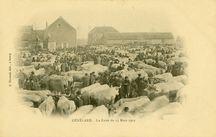 La Foire du 13 Mars 1902  