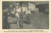 Au camp de Mailly-Maillet |