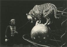CIRQUE ALEXIS GRUSS - 1991 | Kervinio Yvon