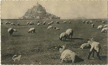 Le Mont-Saint-Michel |