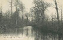 La Vilaine en amont de Cesson  