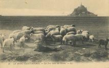 Mont-Saint-Michel |