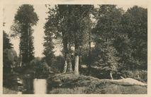 Le Tarrin à Pont Bollote |