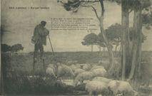 Berger Landais | Lizial A.