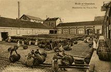 Manutention des vins en Fûts |
