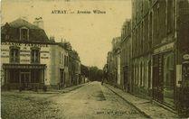 Avenue Wilson |