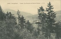 La Route de Saint-Nizier |